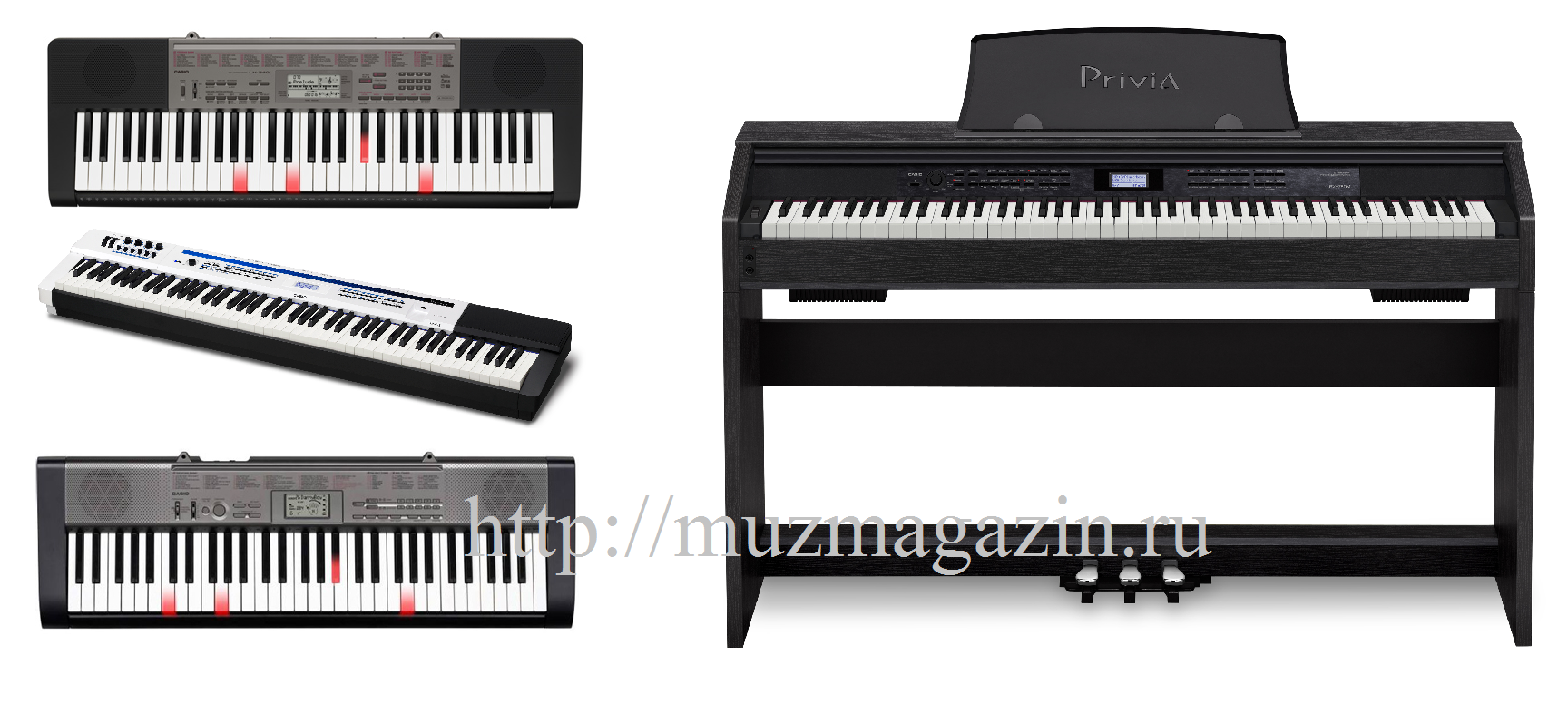 Casio 2013 - цифровые пианино и синтезаторы